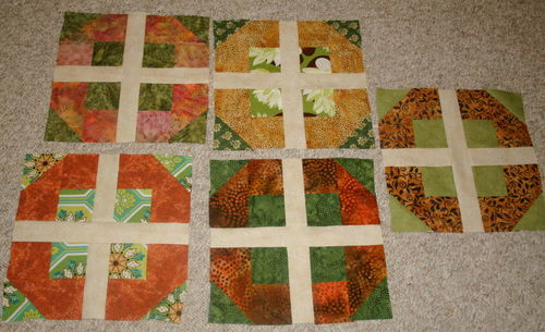 Deb's 5 completed blocks in the OP Sew Along