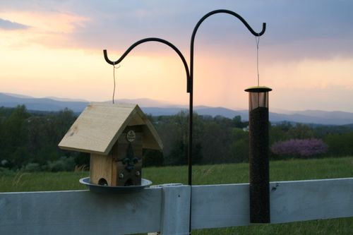 121 Tweet Street bird feeder and goldfinch feeder