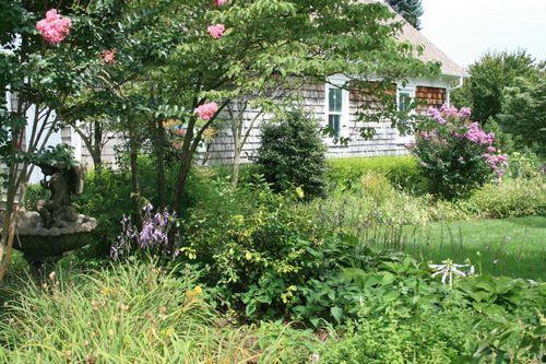 A section of Viette's garden