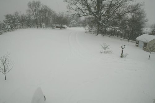 17+ inches already!