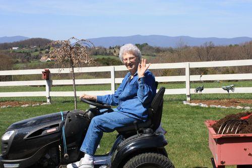 Granny helps move mulch!