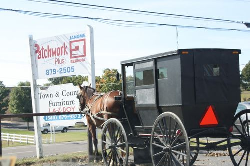 I love seeing a horse and buggy and always have to take a picture!