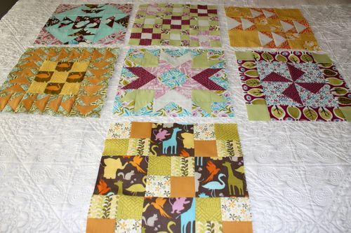 Blocks 1 -7 for the Palooza