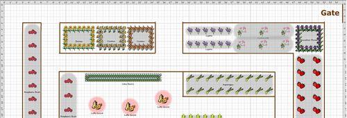 Lower Garden Plan 2011