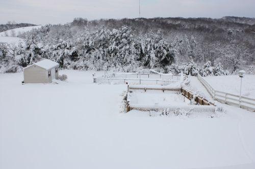 """Garden in Winter ~ 8"""" of snow"""