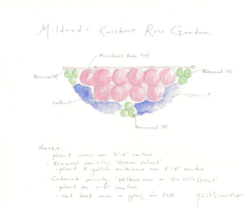 Rose Garden Plan