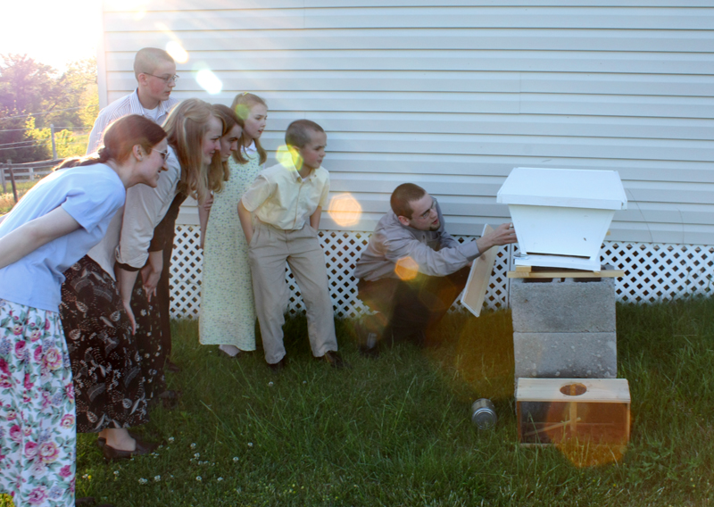 checking out the beehives