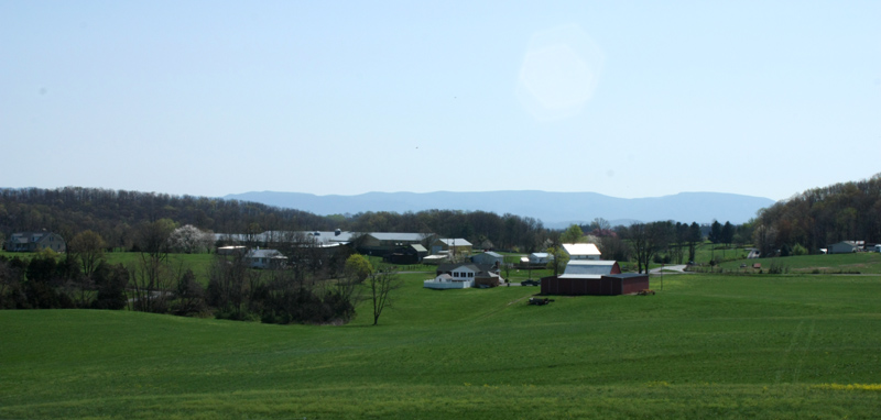 View from the Cupp farm