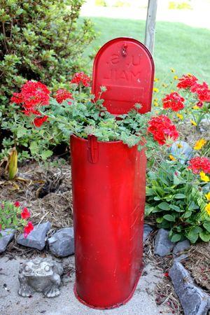 Mailbox Verbenas