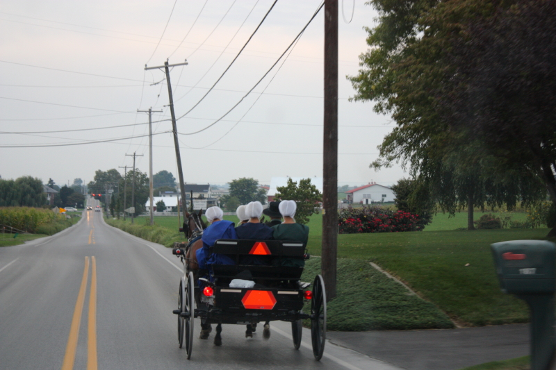 Amish buggy of ladies on a Saturday evening