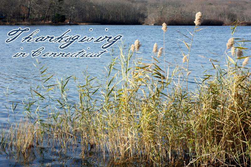 Gorton Pond, Niantic, CT