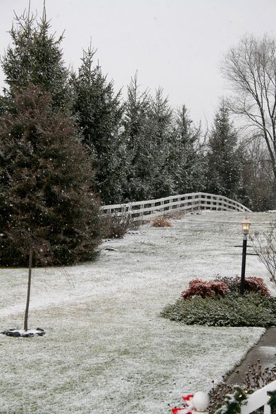 A dusting of snow for Christmas Eve