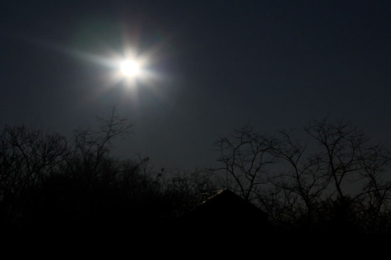 January Moon, photo by Hannah G. Girotti, 2012