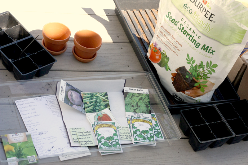 starting seeds on back porch
