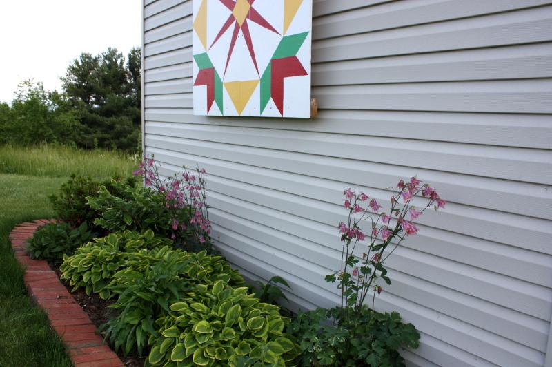 Garden shed ~ hostas, columbine
