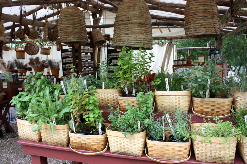 Herbs and Skeps