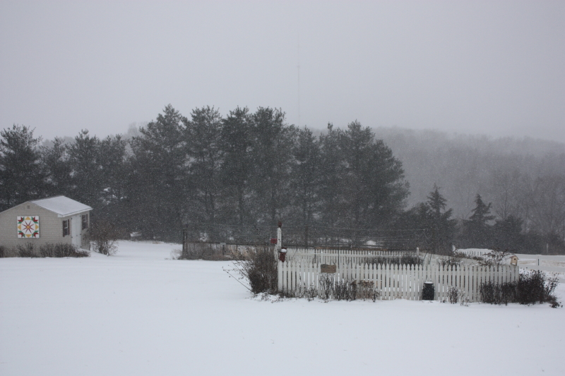 We're getting 8 or more inches of snow today! ~ March 3, 2014
