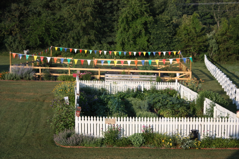 Garden ~ 2014