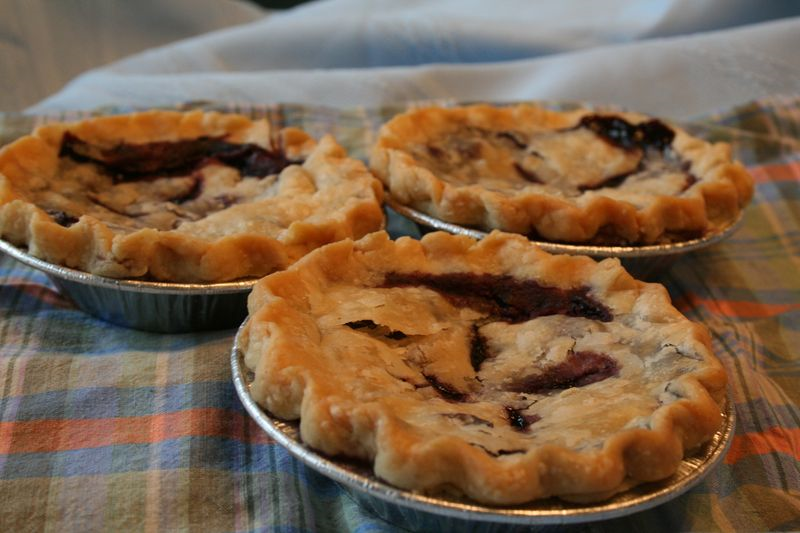 Sarah's blueberry pies