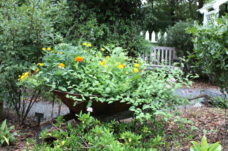 vintage wheelbarrow with flowers