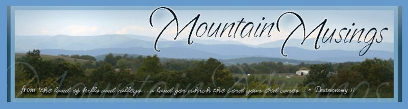 Mountain musings header