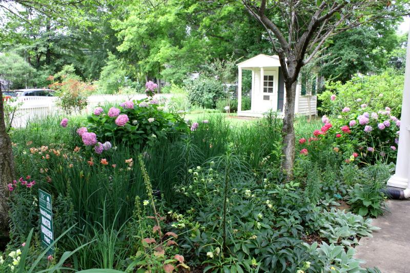 Visitor Center gardens