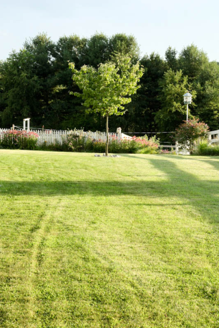 front yard looking towards gardens