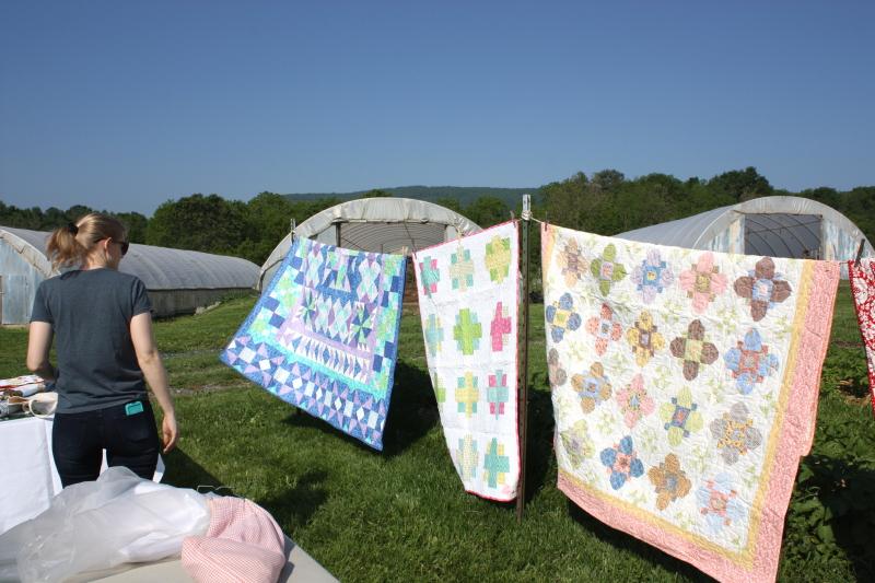Sheri Salatin's quilts
