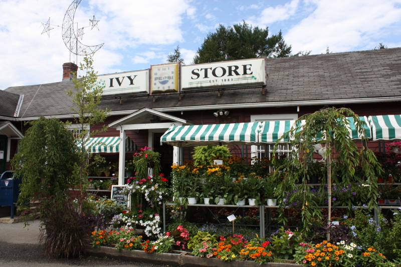 Ivy Store ~ Charlottesville, VA