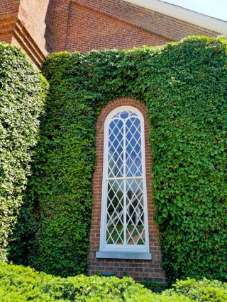 Lee Chapel Window