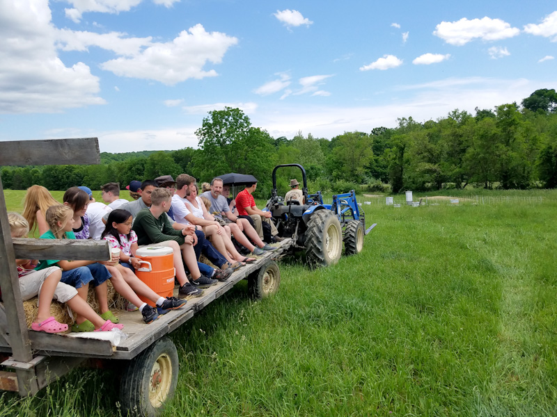 hayride on Salatin farm