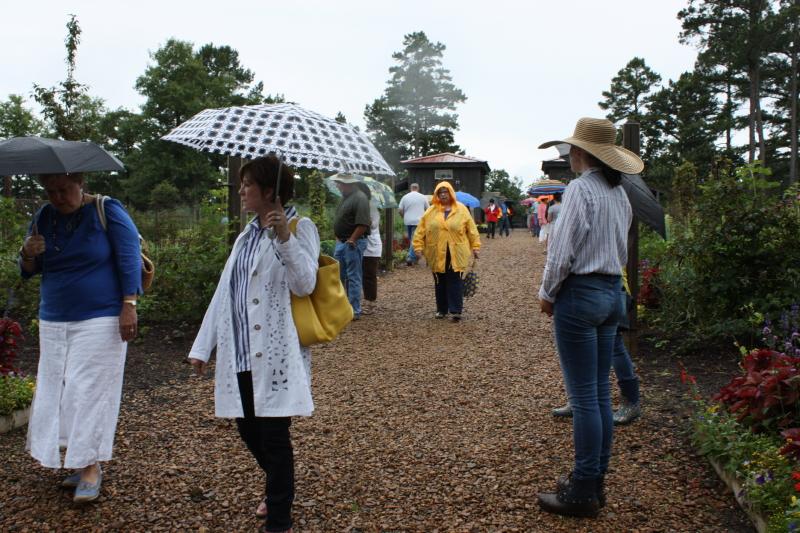 A wet garden tour