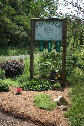 Polyface entrance
