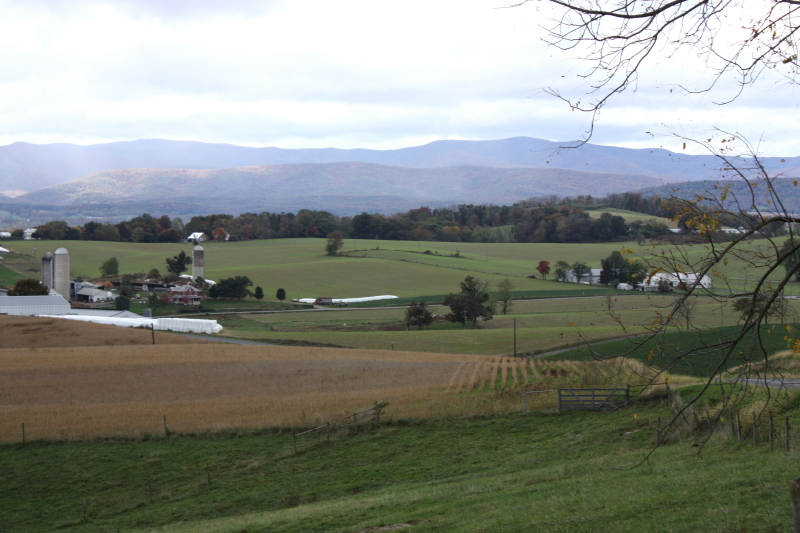 Mennonite farmland in the Valley