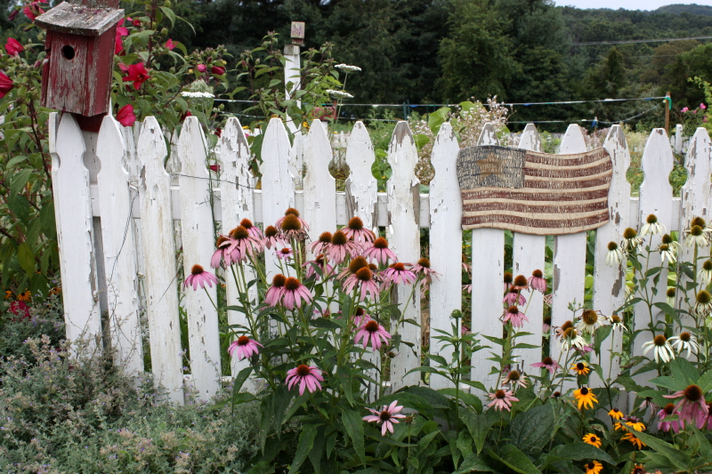 Mountain Musings flower garden
