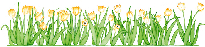 Tulips by Susan Branch