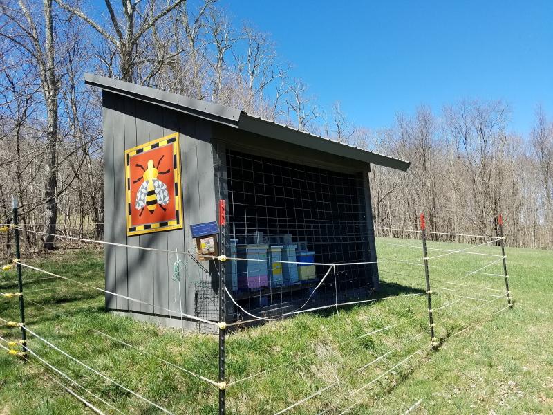 Bee barn quilt