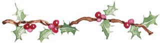 Holly berries by SusanBranch.com
