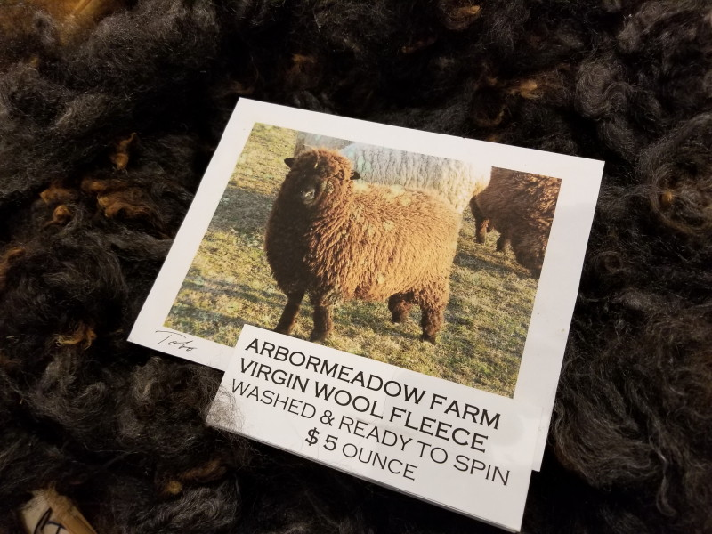 black sheep wool