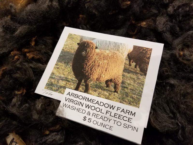 black sheep wool