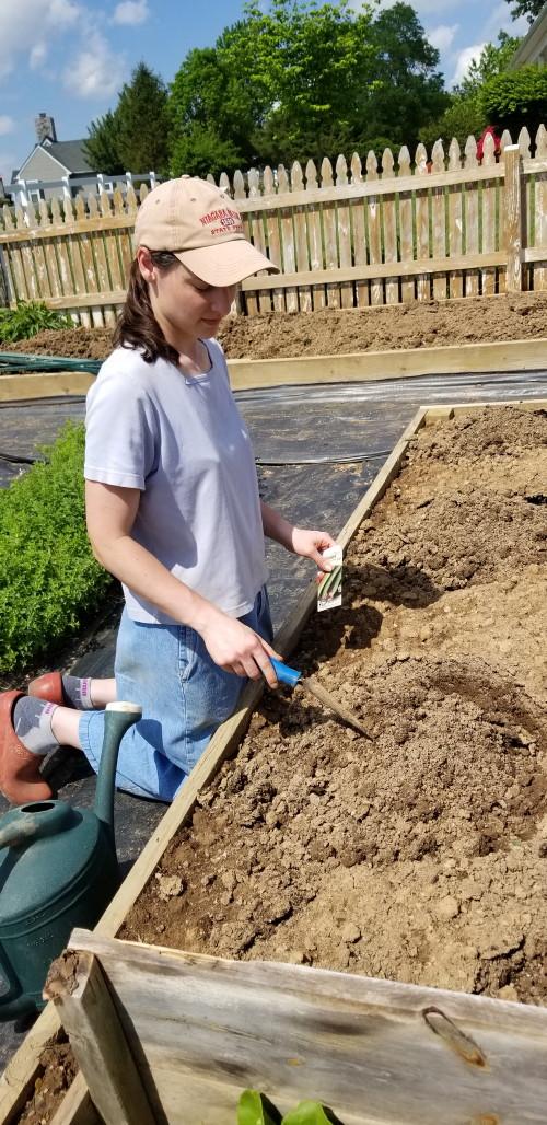 Hannah garden 2_1