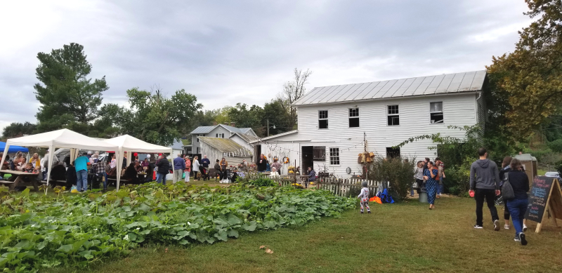 tents, vendors, and squash in the garden