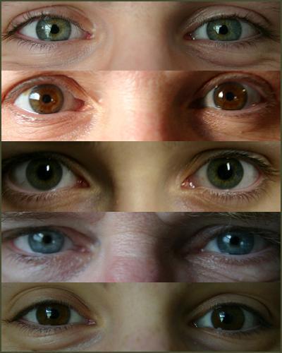 Eyesfinal